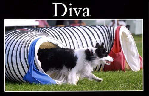 Diva coming out of the tunnel