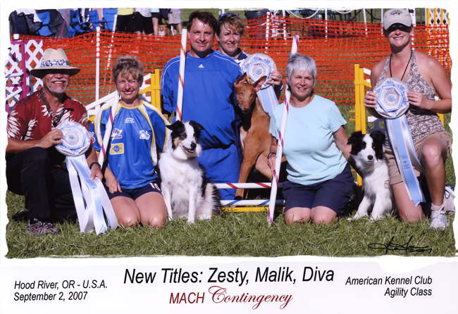 3 MACH dogs and their owners and the judges Sept 2, 2007